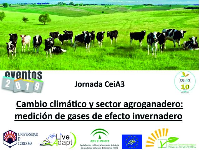 Jornada CeiA3