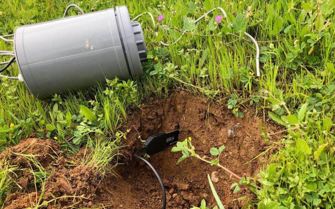 Des capteurs de température et d'humidité pour étudier l'effet du climat sur la production des prairies.