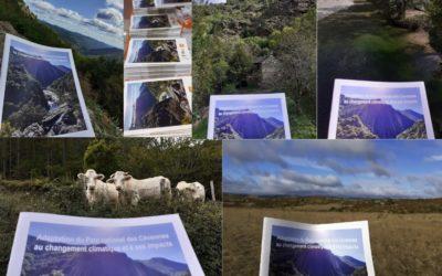 Changement climatique dans les Cévennes: contribution au Cahier territorial «Adaptation du Parc national des Cévennes au changement climatique et à ses impacts»